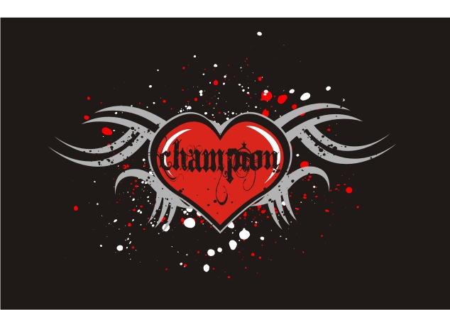 champion-cheer-2011-swagger-t-s