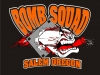 bomb-squad-baseball-2010-orange-red