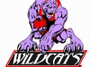 wildcats-basketball